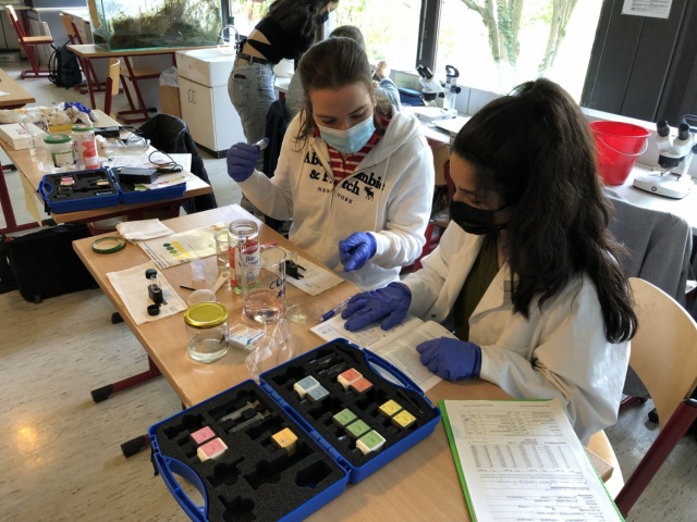 Öko-Exkursion des Biologie-Oberstufenkurses 13 gA-bi1 ins Schulbiologiezentrum Hannover